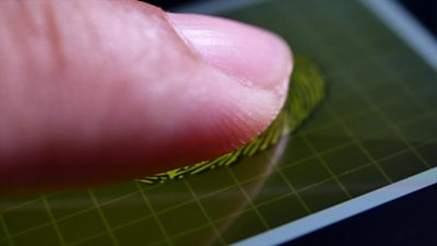 Could Covid-19 vaccine passports use biometric data?