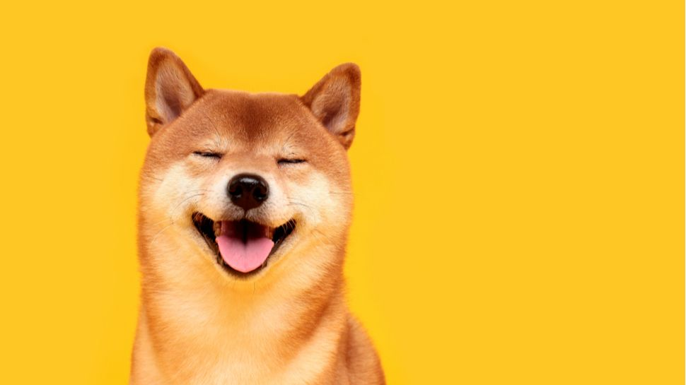 Dogecoin jumps from XRP to the fourth largest cryptocurrency in the world