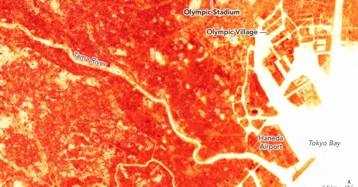 Olympic athletes compete on an urban heat island